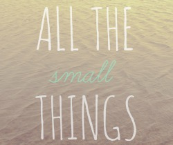 All the Small Things - MummyNeverSleeps