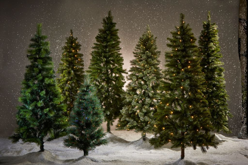Picking The Perfect Christmas Tree, Without the Fight