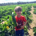 Pick-Your-Own at Garsons Farm