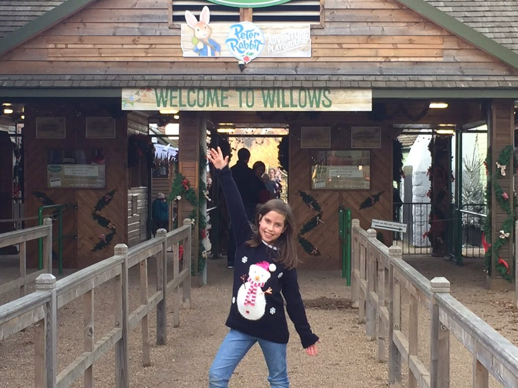 Fun and Father Christmas at Willows Activity Farm